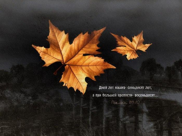 Осенние картинки со стихами со смыслом, день