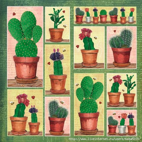 фото картинки для декупажа кактусы телефоны, сайты
