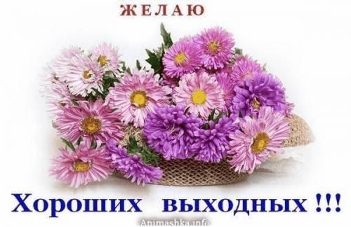 http://img0.liveinternet.ru/images/attach/c/3/76/578/76578562_ZHELAYU_HOROSHIH_VUYHODNUYH_ASTRUY_CVETNUYE.jpg