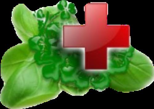 Лечебные травы, Лекарственные травы, Траволечение.
