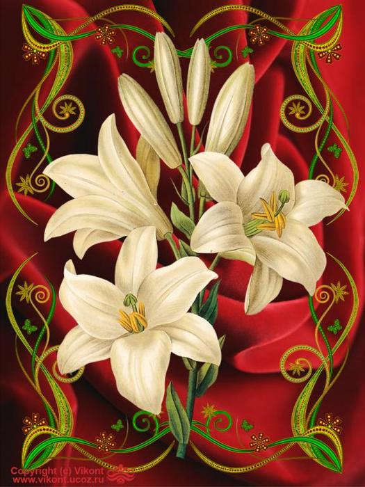 Цветы лилии картинки с днем рождения