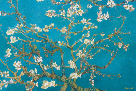 vincent-van-gogh-almond-branches-in-bloom-san-remy-c1890 (473x317, 89Kb)