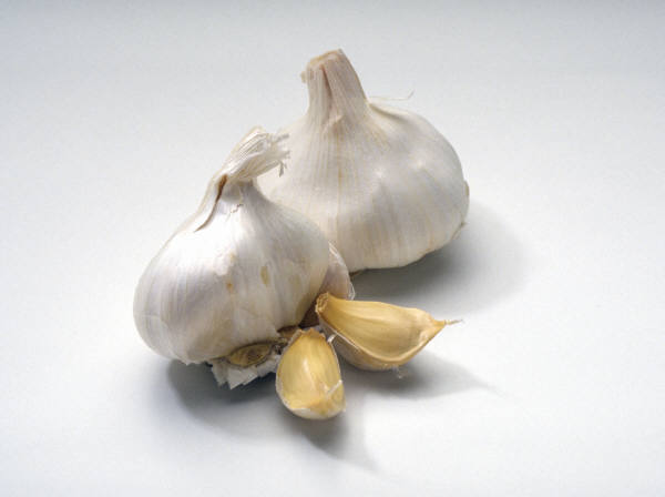 4524271_Garlic (600x448, 16Kb)