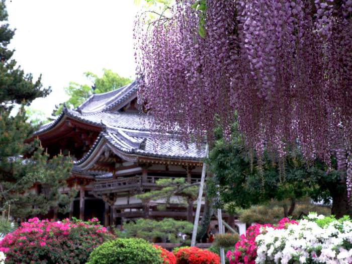 japan_aroundtheworld_com_ua (3) (700x525, 70Kb)