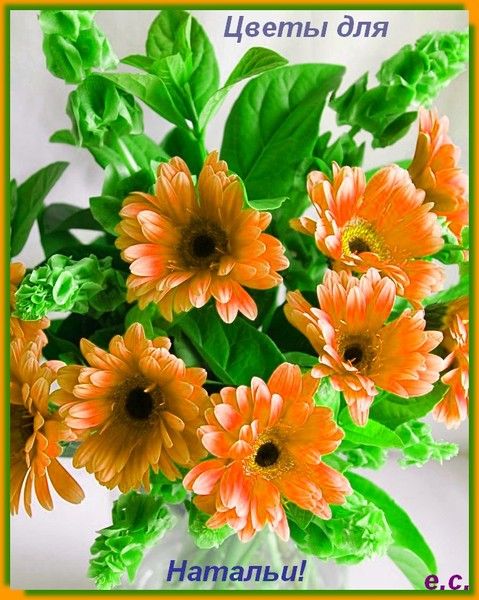 Месяца мальчику, открытки цветы для наташи