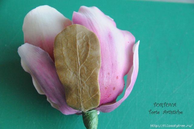 Gumpaste Magnolia Tutorial18 (640x425, 102Kb)