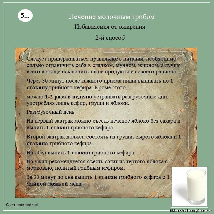 молочный гриб от ожирения/1431852421_lechenie_molochnuym_gribom5 (700x700, 382Kb)