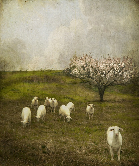 Jamie Heiden Yesterday It Rained (534x640, 162Kb)