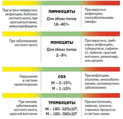 4391866_rasshifrovka_analizov5 (493x477, 77Kb)