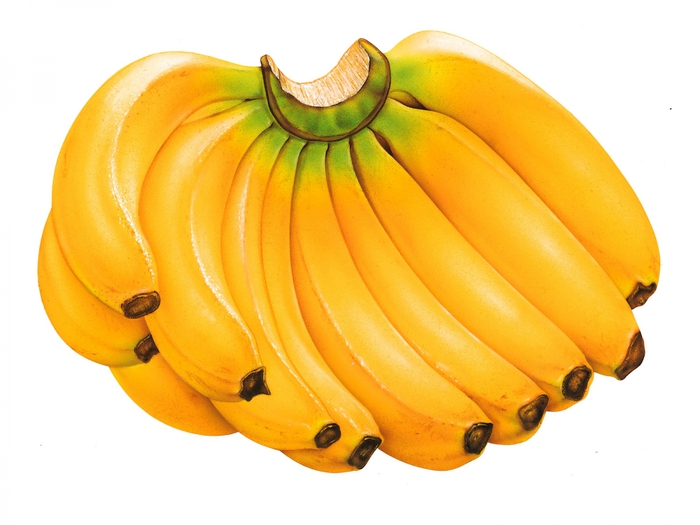 4185290_Fruits_2 (700x525, 194Kb)
