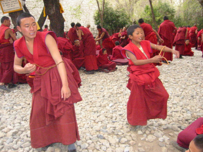 Young_monks_of_Drepung (700x525, 156Kb)