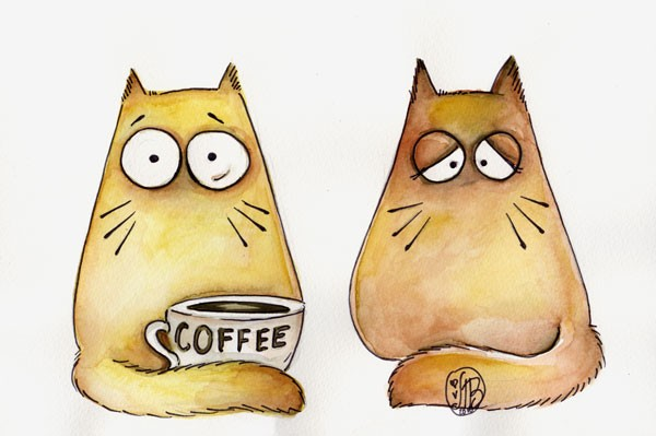 картинки рисунки котов