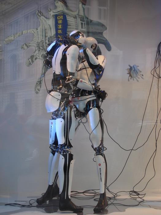 Порнографические роботы манекены цум