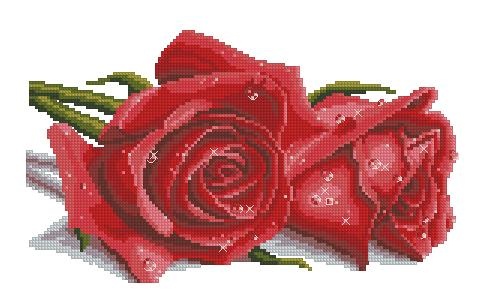3404189_Spring_Cross_Stitch_02141_Two_roses (479x306, 26Kb)