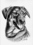 Превью linda-huber-pencil-art-39 (524x700, 159Kb)