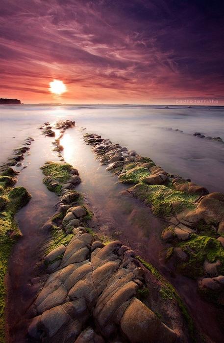 Замечательные фотографии португальского фотографа Pedro Terrinha
