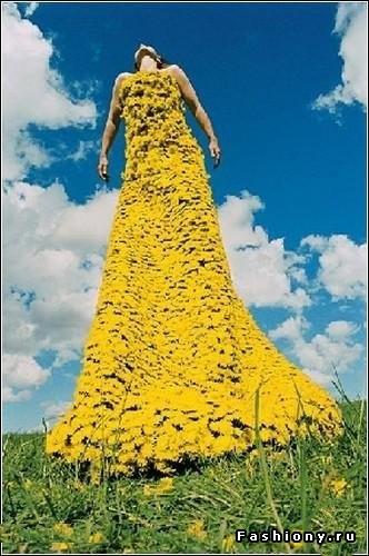 Все о платьях и украшениях Самые красивые платья знаменитостей.