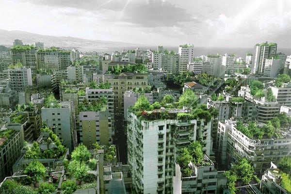 Beirut-Wonder-Forest-1 (600x400, 119Kb)