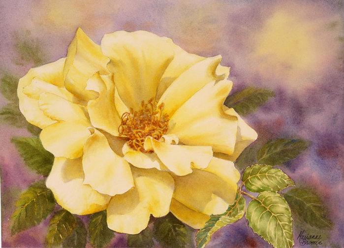 Yellow-Rose (700x504, 88Kb)