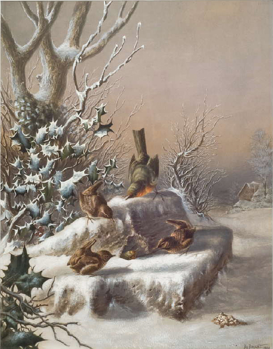 1300235845_robin-and-wrens-in-snow_nevsepic.com.ua (547x700, 323Kb)