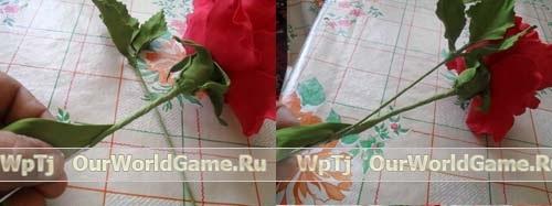 84537460 rozafoam6 Цветы из бумаги