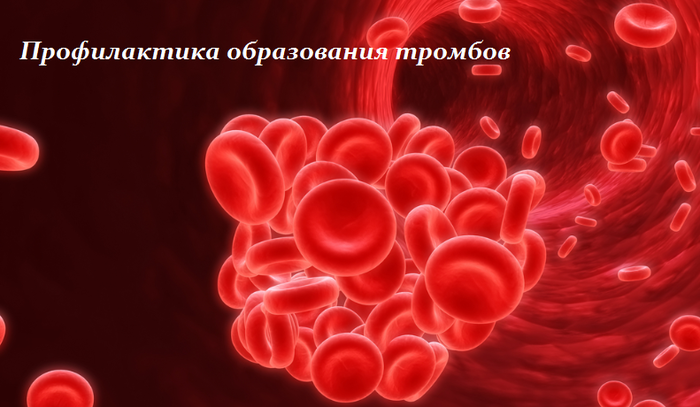 последнем профилактика образования тромбов картинки фламинго