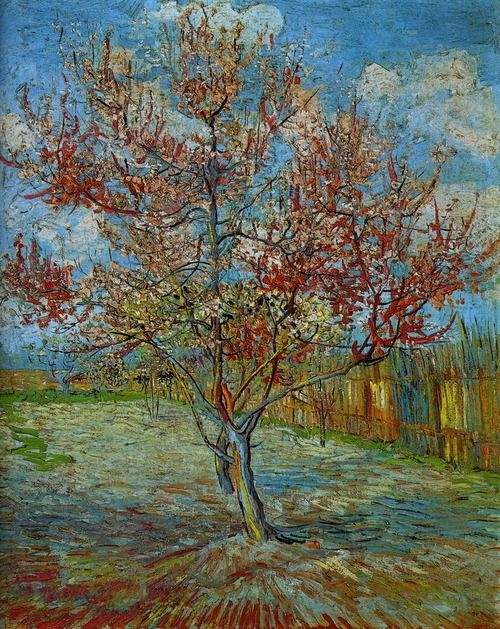 Vincent van Gogh Pink Peach Tree (500x629, 106Kb)