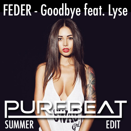 Feder_-_Goodbye_feat._Lyse_Purebeat_Summer_Edit_cover_image_500X500 (500x500, 153Kb)