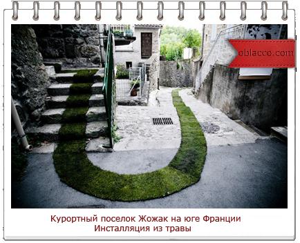 инсталляция из травы/3518263_shablon (434x352, 265Kb)