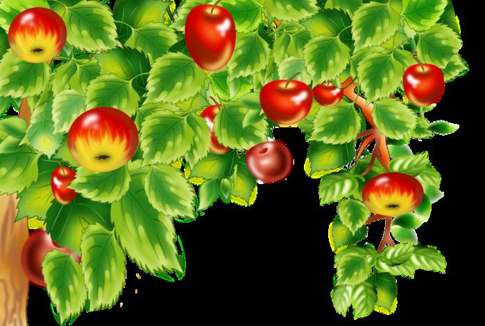 Картинки по запросу яблоня анимация