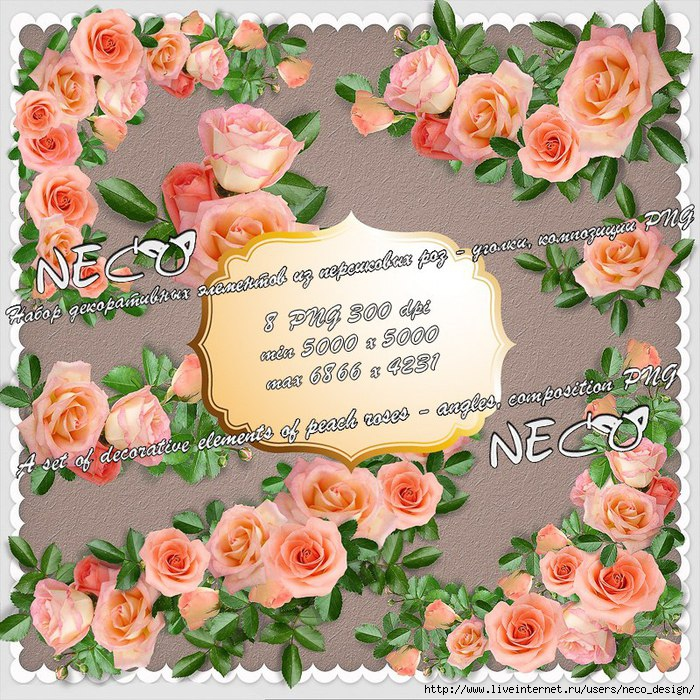 1334060778_set_of_decorative_elements_of_peach_roses__by_Neco (700x700, 443Kb)