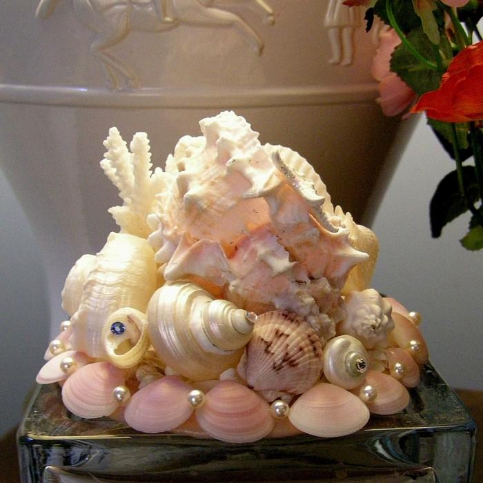 Поделки из морских ракушек рапанов фото