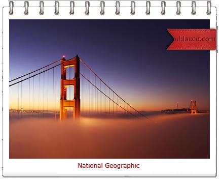 Лучшие фотографии недели от National Geographic.