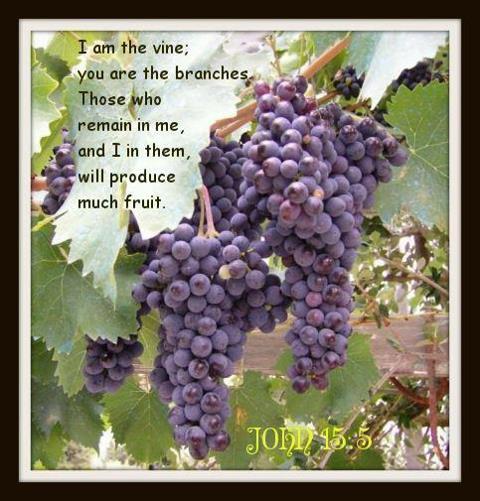 масло 3 сентября день винограда стихи успешная
