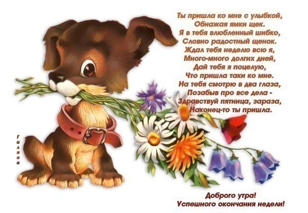 Песня ты сказка моей жизни)) популярные видеоролики!
