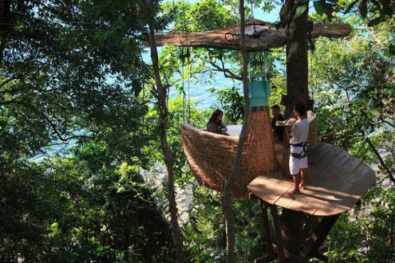 Ресторан в корзине на дереве