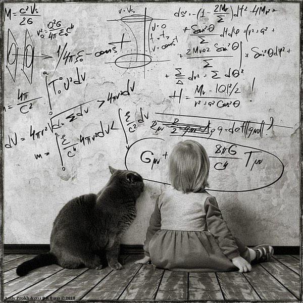 дети кошки фотографии/3518263___ (600x600, 116Kb)