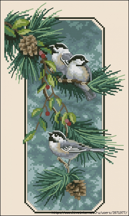 3971977_Dim_03199_Chickadees_on_a_Branch (420x700, 262Kb)