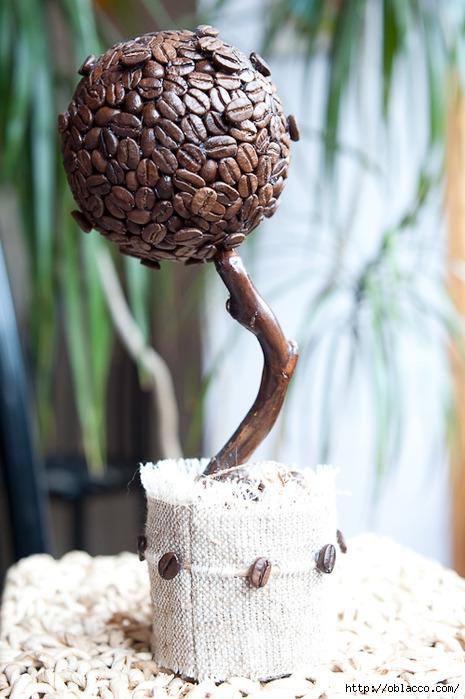 кофейное дерево в мешковине