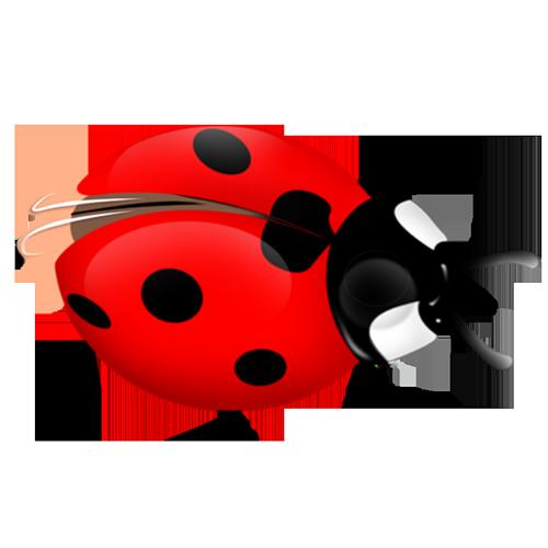 小瓢虫飞音乐下载_卡通小瓢虫图片展示_卡通小瓢虫相关图片下载