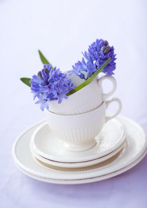 Ванильные фотографии цветов от Sozaijiten 11 (497x700, 202Kb)