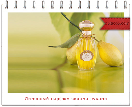 Лимонный парфюм своими руками/3518263_logo (434x352, 151Kb)