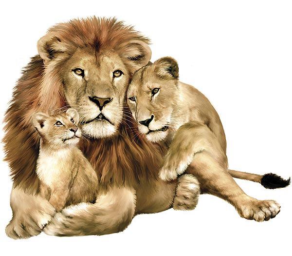 1281617243_lion-07 (600x525, 89Kb)
