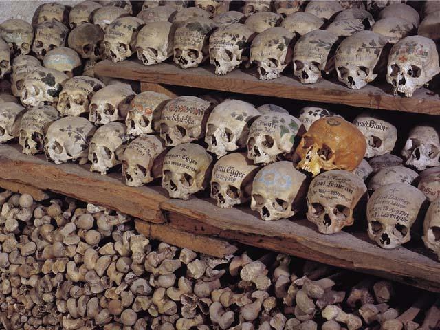 черепа (700x480, 101Kb)