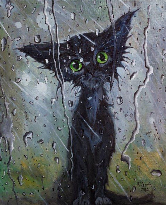 Смешные, смешные картинки на тему дождя