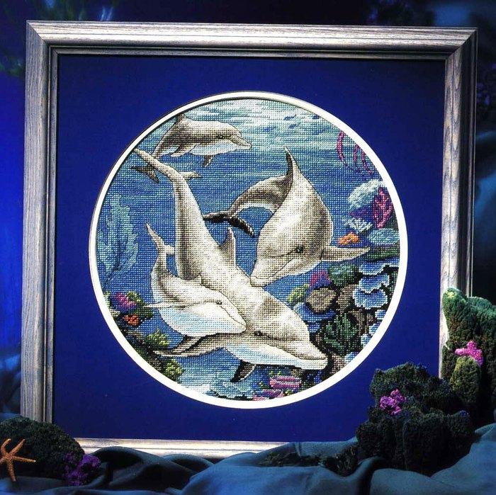 Дельфин все картинки мясная сборная