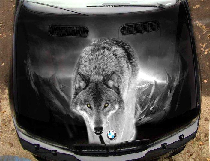 Картинки волк на капот авто