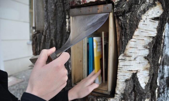 Book-tree-4 (700x418, 91Kb)