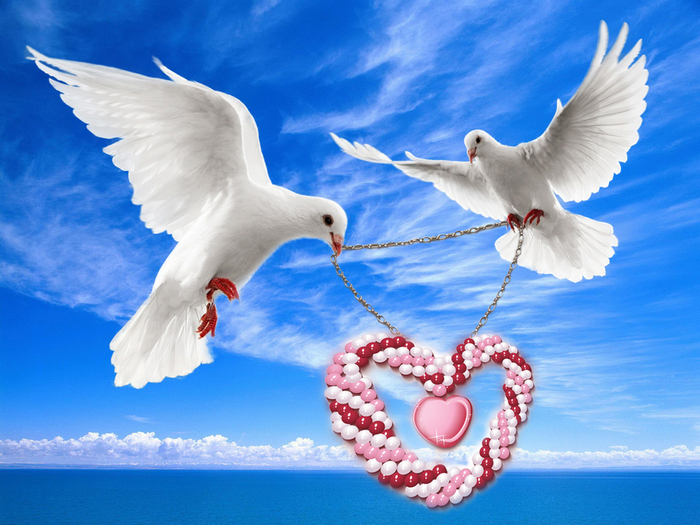 Мужчине, картинки два голубя в сердцах