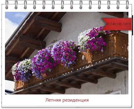 Балкон - летняя резиденция